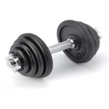 Focus Fitness Sport Dumbbell 15kg