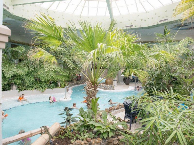 Vakantieparken In Nederland Met Subtropisch Zwembad Diknl