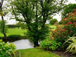 10x Vijver Inspiratie : 8 tips voor het creëren van een landelijke tuin dik.nl