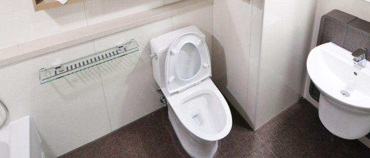 WC verstopt; wat moet je doen?