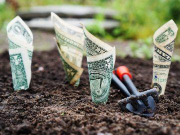 Bij welke Nederlandse banken kun je groen sparen?