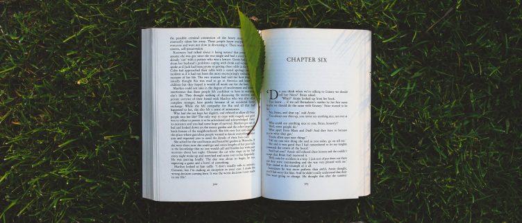 Hoe Kun Je Gratis Boeken Krijgen Of Downloaden Diknl