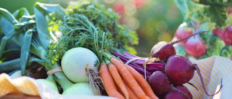 8 Tips als je minder vlees wilt eten
