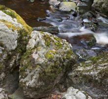 camping rivier ardennen