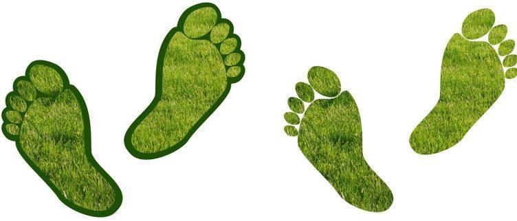 15 tips om je ecologische voetafdruk te verminderen