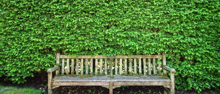 12 voorbeelden van goedkope tuinafscheidingen