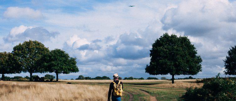 6 tips voor wandelen in Friesland