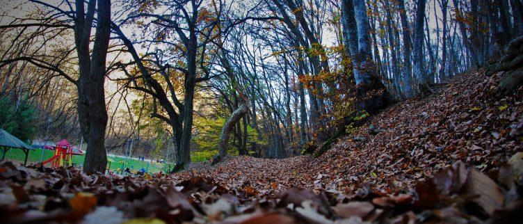 6 Tips voor een scavenger hunt met kinderen
