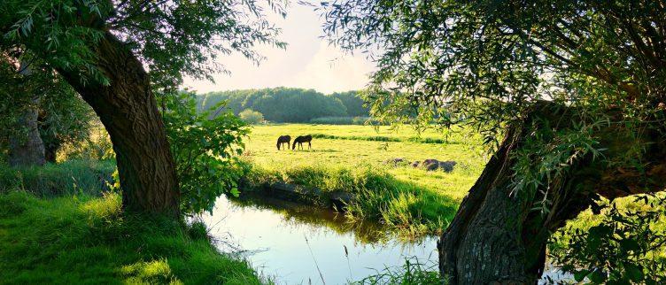 6 Romantische plekken in Nederland