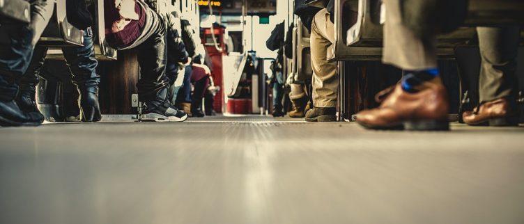 De 11 leukste dagtochten met de bus