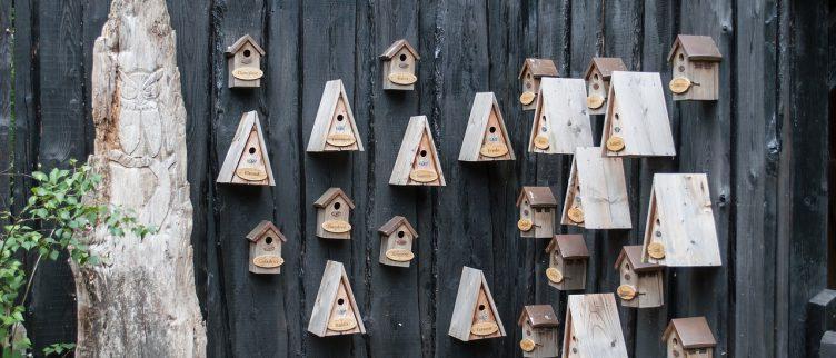 8 voorbeelden van schutting decoratie
