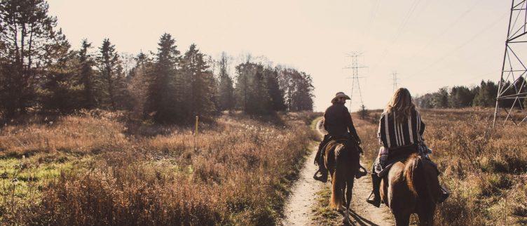 5x mooie plekken om paard te rijden in Nederland