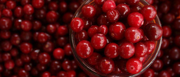 Gezondheidsvoordelen van cranberry capsules