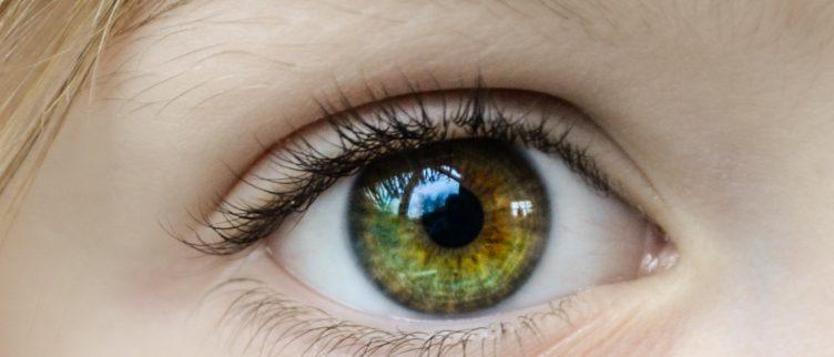 Wat is de beste oogcrème?